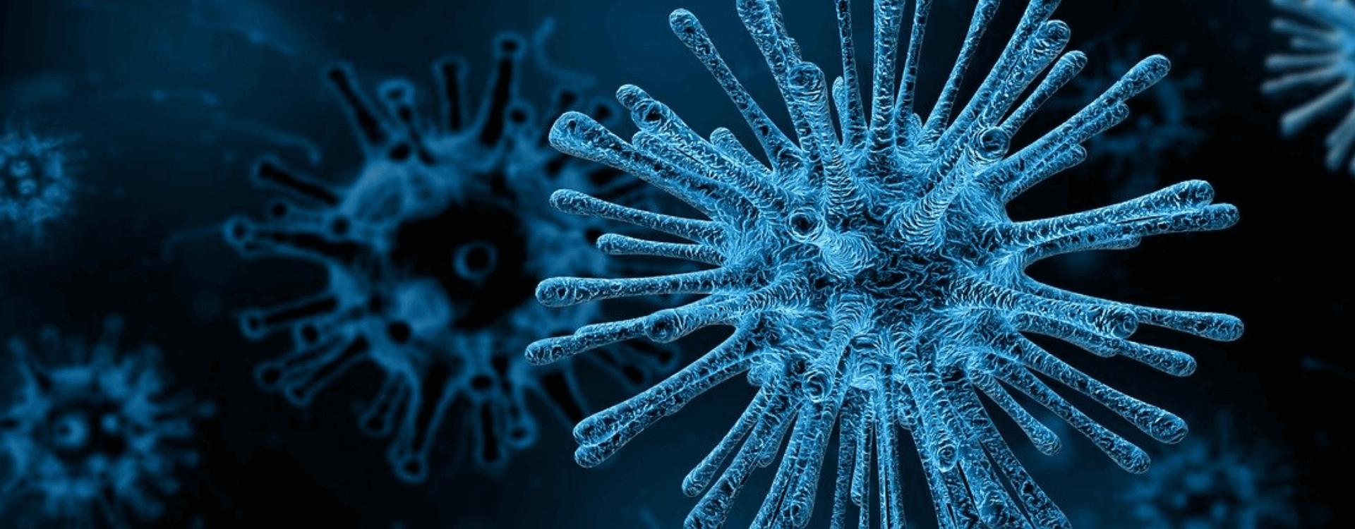 koronawirus - aktualności
